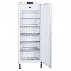 Liebherr GGv5810 Commercial Freezer